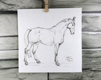 Horse art original Warmblood sepia pen & ink sketch drawing