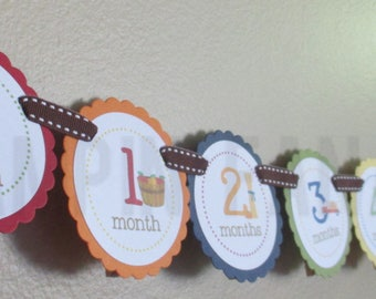 READY to SHIP Harvest Fun Collection: Just Born/0-12 mos Picture Banner. Harvest First Birthday Banner. Pumpkin. Tractor. Fall. Autumn.