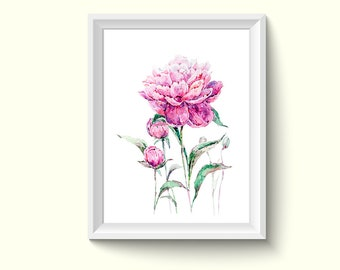 Peony Flower Watercolor Painting Poster Art Print P376
