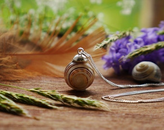 Small snail sterling silver necklace, snail pendant, Tentsmuir Forest real snail necklace, gifts for a nature lover