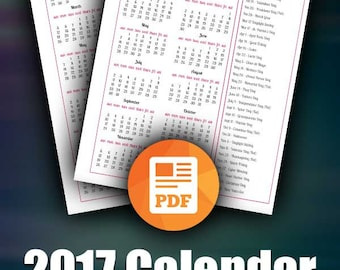 2017 Calendar (2 Versions) | Includes Both Sunday-Saturday & Monday-Sunday | DIY Planner, Business Planner, ARC System, All Holidays, Letter