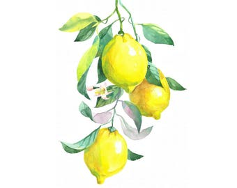 Printable Watercolour Art, Branch of lemon, Digital Download, Wall Art, Kitchen Art, Home Decor, Fruits Art