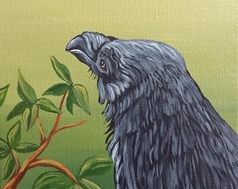 An Arbutus Tree Raven Crow Bird Art Original 6 x 6 Canvas Wildlife Painting-free shipping- -Carla Smale