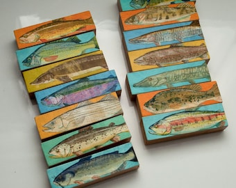 Fathers Day Gifts for Fisherman, Coastal Decor, Birthday Gift for Dad Gifts, Freshwater Fish Art Blocks, Fish Prints, 14 Fish Sticks