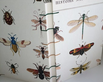 Insect Notebook Sketchbook or Journal // Coptic