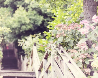 San Francisco Photography - Telegraph Hill - Coit Tower - Stairs - California - SF - Fine Art Photography Print - Tan Pink Green Home Decor