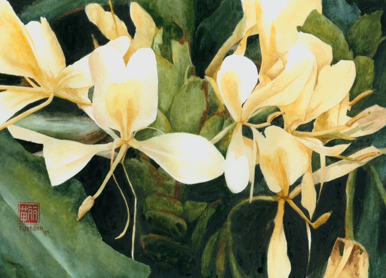 Tropical flower art print white ginger flower painting zoom izmirmasajfo