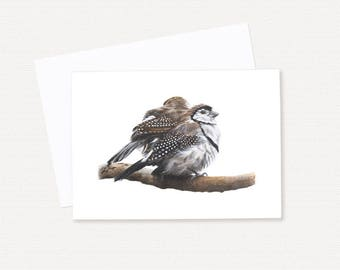 Double-barred Finches - Australian Birds - Blank Greeting Card
