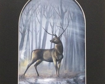 Stag in a Glade