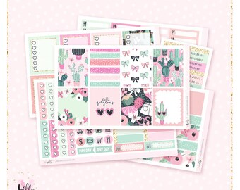 Prickly Pink - Planner sticker kit / 6 sheets - for the vertical Erin Condren or Happy Planner