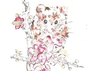 Beautiful british wildlife watercolour drawings