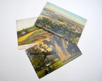 Lot of 3 Vintage Washington State Postcards, Bellingham, Largest Oak Tree, Farming  FREE SHIPPING, 1910s-1920s