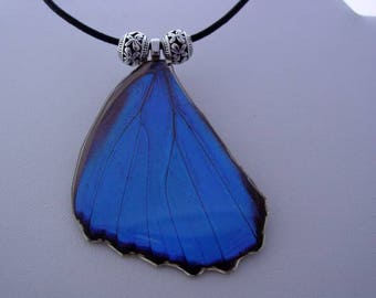 Real Butterfly Wings Jewelry Electric Blue Morpho Menelaus Hindwing Necklace S6