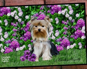 Yorkie Doormat, Yorkie Gift, Yorkie Floor Mat, Yorkshire Terrier Gift, Yorkie