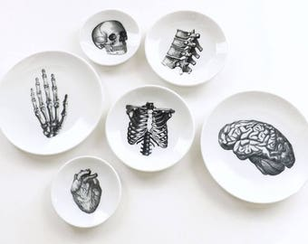 Anatomy Dishes small shallow ceramic plates goth decor halloween graduation gift ring dish skull anatomical heart brain spine home medical