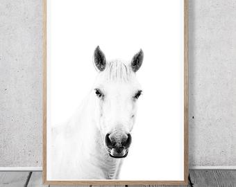 White Horse Print - Wild Horses Wall Art, Instant download, Arabian Horse Wall Art, Bohemian Wall decor, Modern Home decor, Horse Head Print