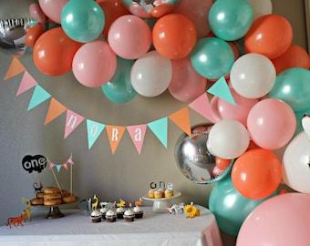 Balloon Art Kit (custom balloon colors)