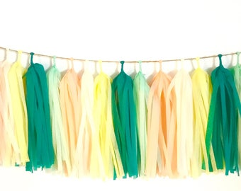 DIY set of 18 Tissue Tassel Garland /Fringe tassel garland /party decor /wedding decoration / birthday party /birthday decoration/Room decor
