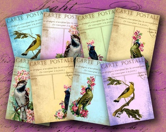 Instant Download Digital Collage Sheet Birds on Vintage Postcards ATC 2.5 X 3.5 inch - DigitalPerfection digital collage sheet 922