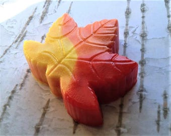 Maple Leaf Soap, Leaf Soap, Bath Bar Soap, Fall Soap, Autumn Soap, Novelty Soap, You pick scent & color