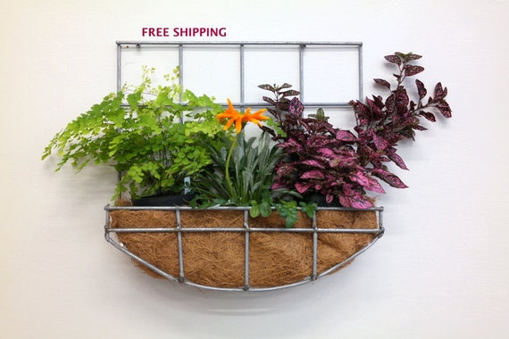 Outdoor Hanging Planter Wall hanging planter with curved workwithnaturefo