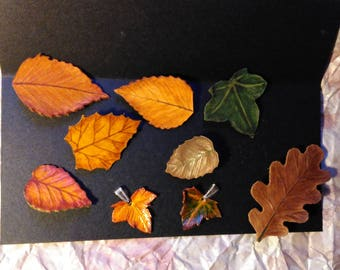 Sheets for hair, clothes and accessories you want. Leather leaves. Botanical jewellery. Dry leaf forks