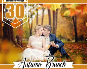 30 autumn brunch photoshop overlays, falling leaves, shooting through branches, autumn, leaves, wedding baby photo, PNG files