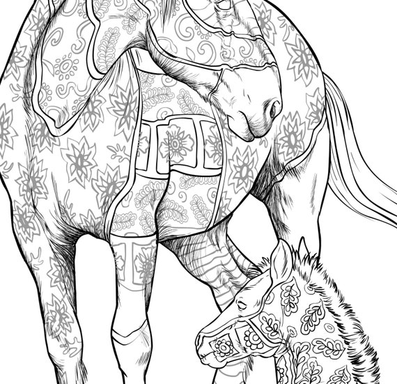 kleurplaten voor volwassenen van paarden