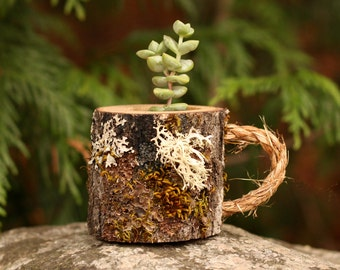 Birthday Gift for Mom Mug Succulent Pot Gifts for Her Gifts for Friend Gifts for coworker Gifts for Best Friend