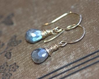 Labradorite Earrings Wire Wrapped Faceted Gray Gemstone Briolette Earrings 14k Gold Filled Earrings