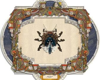 Queen Beetle Art Assemblage Flat Pack