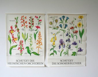 Set of 2. Vintage Educational Environmental Protection Floral Print Poster Flora DDR Germany, Flowers