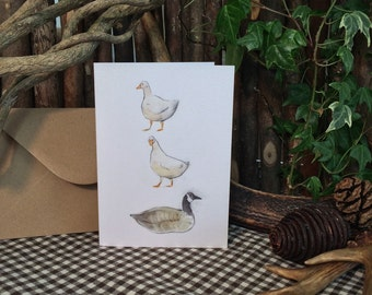 Duck, Duck, Goose! Illustration - Greetings Card - Sketchbuck