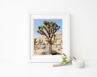 joshua tree print, desert print, california print, joshua tree photo, desert photography, landscape print, nature print, palm desert print