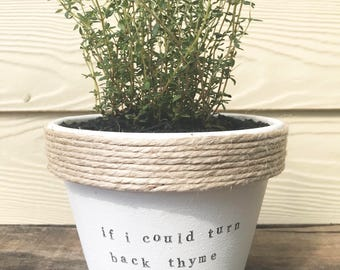If i could turn back thyme | funny pot plant with a pun | cher | music lyric gift 11cm pot