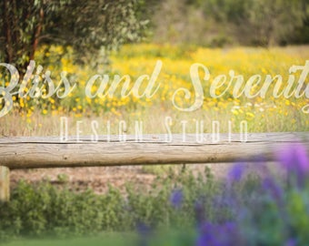 Rustic wood bench in floral field with purple and yellow flowers digital background