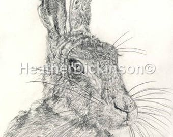 Art Print/Canvas - 33. March Hare