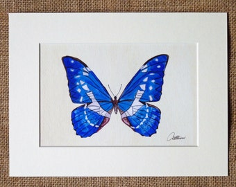 Butterfly Picture Butterfly Artwork Blue Butterfly Unframed Butterfly Print - popular choice, a favorite among butterfly lovers