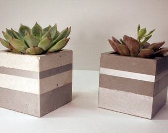Pair of modern concrete cube pots for succulents, cactus, candle holders, office supplies, brushes, pens, and pencils