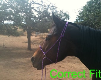 Simple Bitless Rope Bridle Hackamore riding halter DIY Instructions Easy