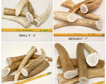 Elk Antlers for Dogs, ONE POUND (choose from Sm, Med, Lg or XL) Elk Antler Chews for Dogs, Natural from Wild Colorado Elk