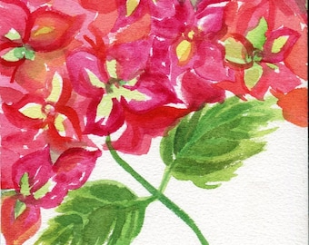 Hydrangeas watercolors paintings original, 8 x 10, Red and green blooms, original watercolor painting of hydrangeas, floral art, hydrangeas