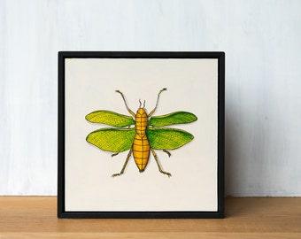 Insect Art Original Painting - Katydid, framed