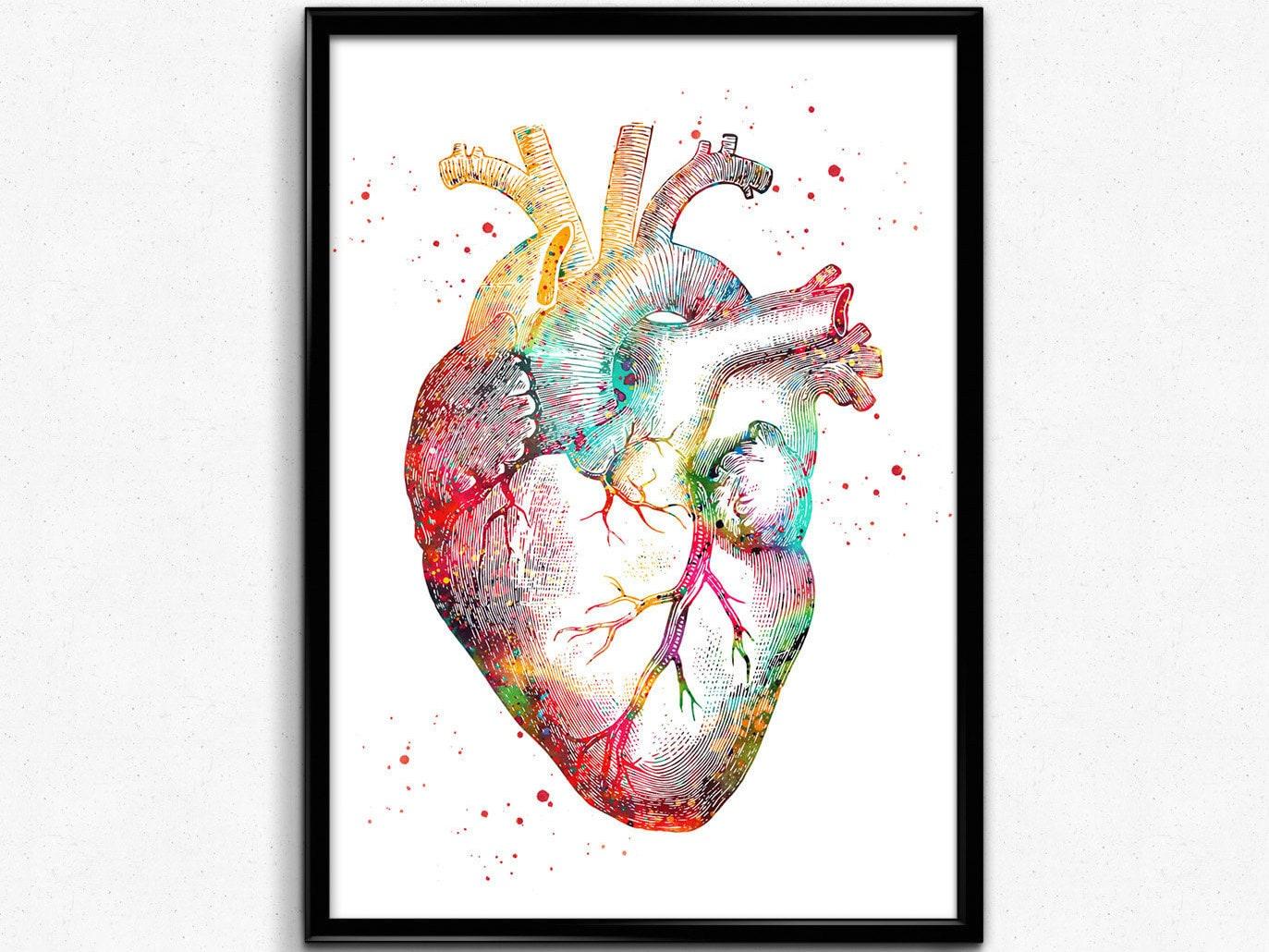 Menschliches Herz Herz Plakat Herz-Anatomie-Kunst Chirurgie