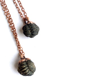 Trilobite fossil necklace | Raw fossil necklace | Trilobite necklace | Black fossil stone pendant on copper chain | Trilobite jewelry
