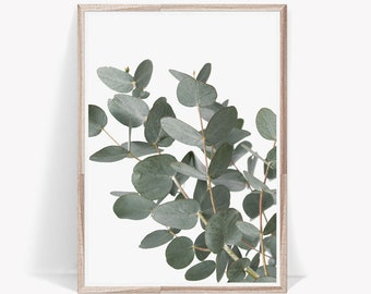 Eucalyptus Print, Art Print, Artwork, Eucalyptus Leaves, Print, Wall Art, Botanical Print, Botanical, Digital Print, Wall Print, Eucalyptus