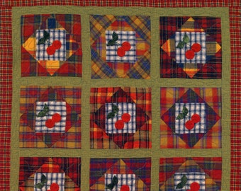 Mad About Plaid Quilt Book