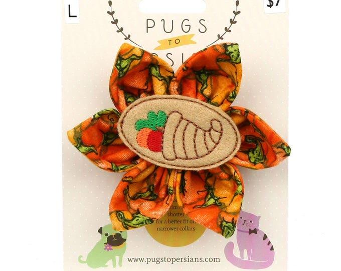 Thanksgiving Dog Bow - Cornucopia on Pumpkins - Flower - Collar Blossom - Large Size
