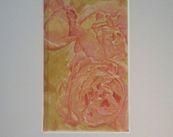 cabbage rose, lithography