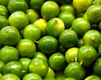 TreesAgain Potted Key Lime Tree - Citrus × aurantiifolia - 8 to 12+ inches